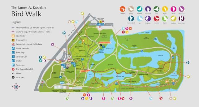 bird-trail-brochure-map