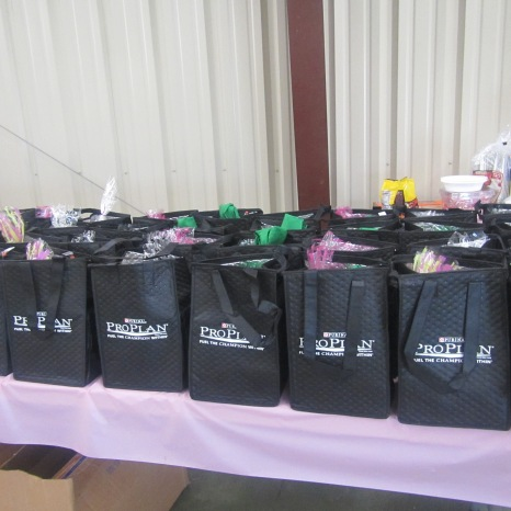 Gift Bags for all the kids that went to the event