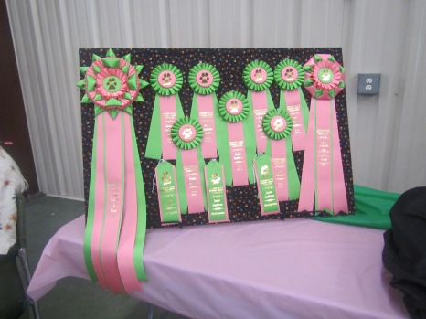 The ribbons that were awarded