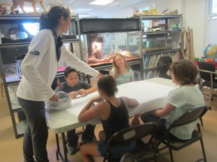 Beatriz showing us how to make the seed balls