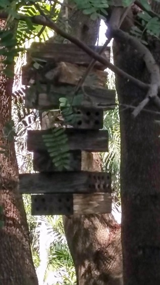 a bee hotel for solitary bees