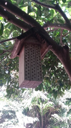 another bee hotel
