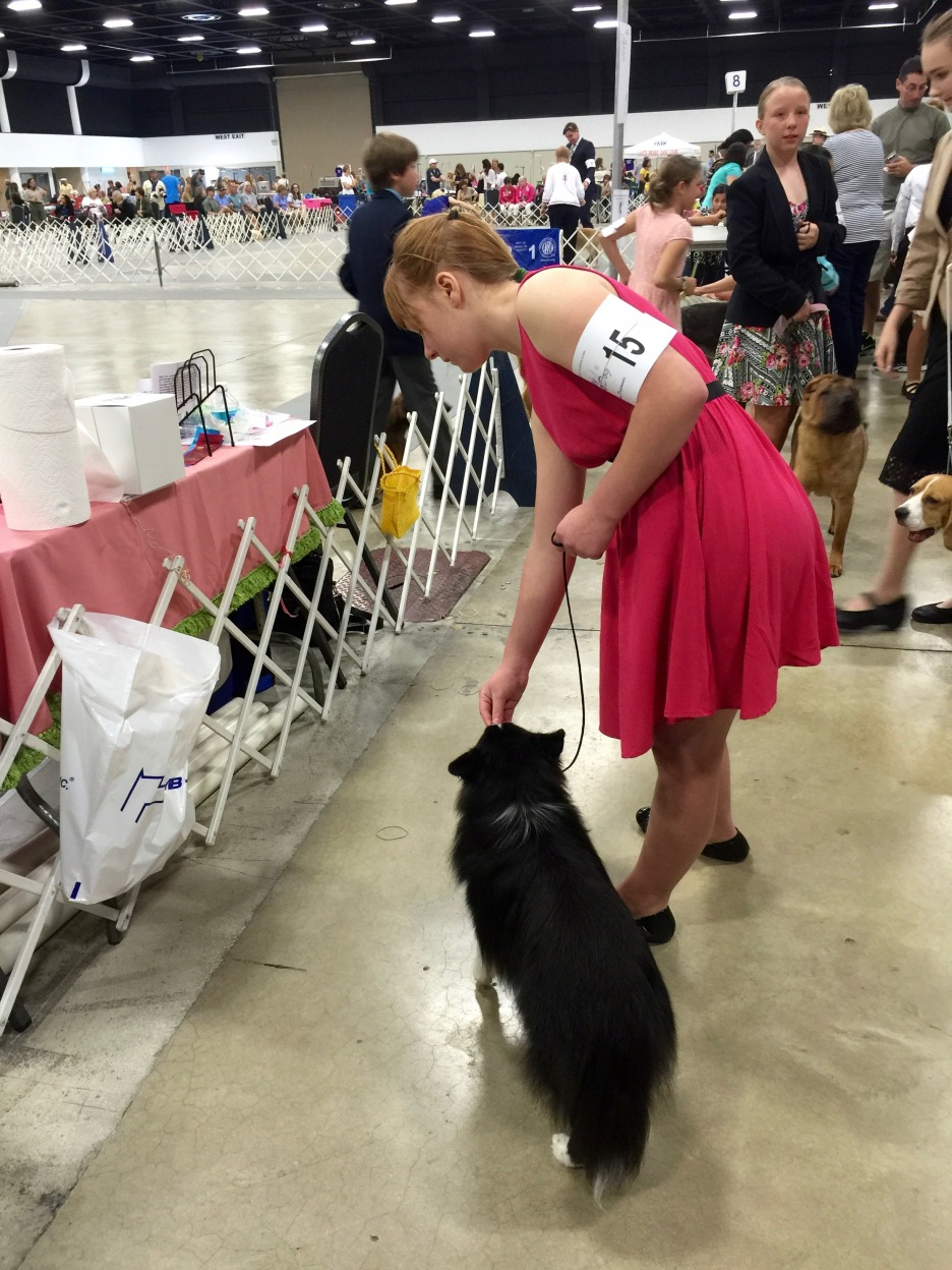 2016/Mar12 WPB DogShow
