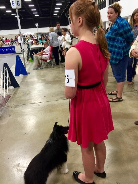 2016/Mar12 WPB DogShow