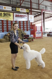 Kelly and her poodle Chloe, they are in my class