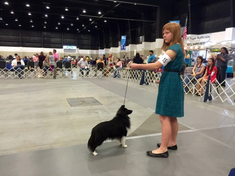 2016/Mar13 WPB DogShow
